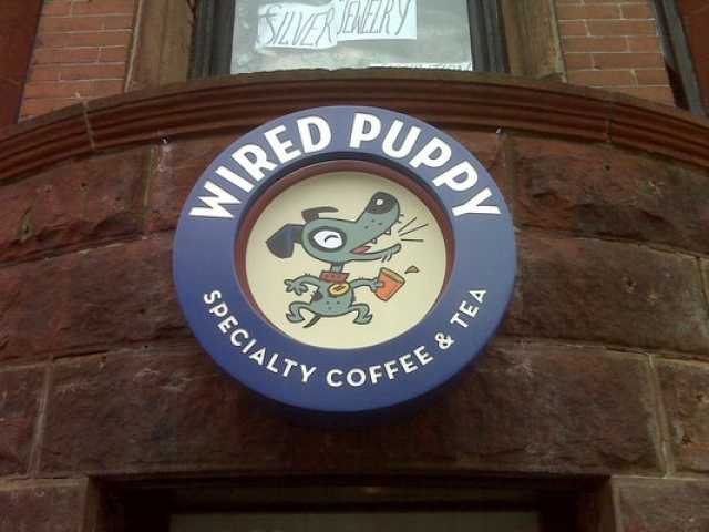 Wired Puppy - Boston - 02116 - Cafe - Boston guide
